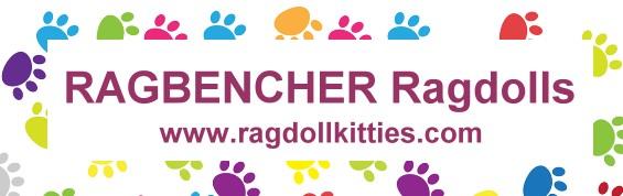 link-banner_ragbencher
